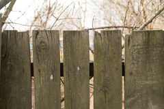 Een fragment van een houten piketomheining Stock Foto's