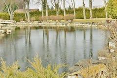 Een fragment van het meer in het park Stock Foto's