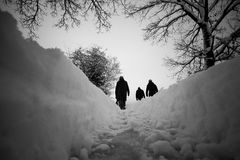 Een gang in de sneeuw stock fotografie