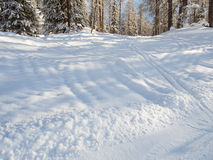 Een gang door de sneeuw Stock Foto