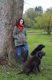 Een gang in het park in de Herfst Stock Foto's
