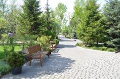 Een gang op een hete de zomerdag voor een koel stadspark Stegen, banken en een vijver stock afbeelding