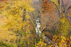 Een gang op Theodore Roosevelt Island Park en kleurrijke bomen in de herfst, Washington DC Royalty-vrije Stock Afbeelding