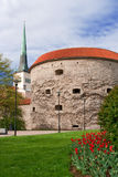 Een gang rond Tallinn Royalty-vrije Stock Foto