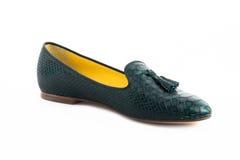 Een geïsoleerde elegantie vrouwelijke schoenen Stock Fotografie