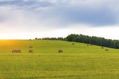 Een gebied in de zomer met stro tegen de achtergrond van bossen, hemel en wolken royalty-vrije stock foto