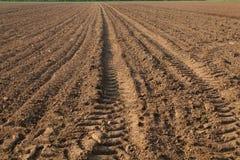 Een gebied op landbouwgrond royalty-vrije stock afbeeldingen