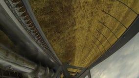 Een gebied van tarwe stock videobeelden