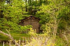 Een gebouw in het hout dat door bomen en struik wordt omringd stock foto's