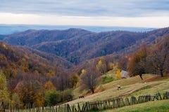Een gebruikelijke landelijke vreedzame de herfstscène stock fotografie