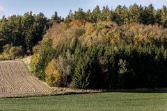 Een gebruind gebied naast een vergankelijk gekleurd bos royalty-vrije stock foto's