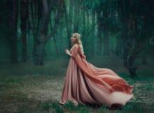 Een geheimzinnig blondemeisje in een lange roze kleding met een trein en een regenjas die in de wind fladdert De tovenaarsbladere stock afbeeldingen