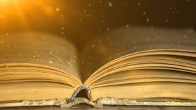 Een geheimzinnig boek Het boek is volledig van geheimzinnigheid Sprookjes 6 stock video