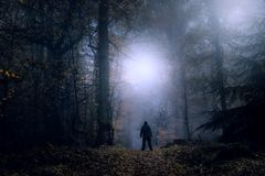 Een geheimzinnig concept geeft uit Een eenzaam cijfer die zich op een bosweg op een griezelige nevelige nacht bevinden die lichte royalty-vrije stock foto