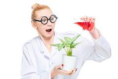 Een gekke chemicus die een bloem met een chemische substantie water geven stock afbeelding