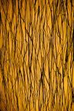 Een gele bruine achtergrond Royalty-vrije Stock Foto's
