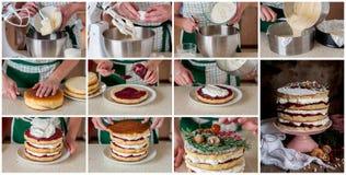 Een Geleidelijke Collage van het Maken van Kerstmis Gelaagde Cake Stock Afbeelding