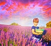 Een gelukkig meisje is op een lavendelgebied houdt een mand flowe royalty-vrije stock fotografie