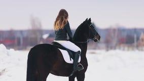 Een gelukkige jonge vrouw met lang haar die een paard in een dorp berijden Status op sneeuwgrond stock videobeelden