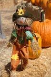 Een gelukkige vogelverschrikker in het pompoenflard stock foto