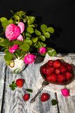 In een geschilderde kruik zijn er takken van lilac rozen en jasmijnbladeren royalty-vrije stock foto's