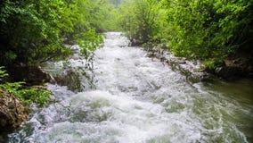 Een gevaarlijke stormachtige rivier in het bos stock footage