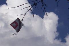 Een gewurgde vlieger againt blauwe hemel en mooie wolken Royalty-vrije Stock Fotografie