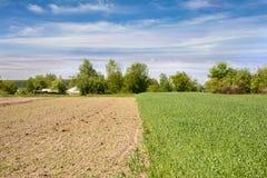 Een gezaaide moestuin in de lente en een perceel van tarwe in het dorp royalty-vrije stock fotografie