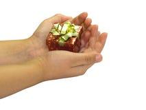 Een gift in hun handen Stock Afbeelding