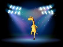 Een giraf die op het stadium met schijnwerpers dansen Royalty-vrije Stock Foto's