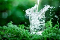 Een glas koel zoet water op natuurlijke groene achtergrond Royalty-vrije Stock Afbeeldingen