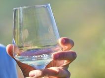 Een glas met witte wijn stock foto