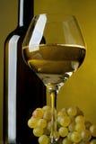 Een glas wijn, fles en druiven Royalty-vrije Stock Foto's