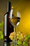 Een glas wijn, fles en druiven Stock Foto