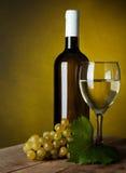Een glashoogtepunt van wijn en fles Stock Fotografie