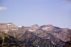 Een glijscherm over het Nationale Park van Grand Teton royalty-vrije stock foto's
