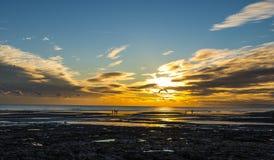 Een glijscherm vliegt at low tide in de zonsondergang over Bexhill-strand royalty-vrije stock afbeeldingen