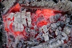 Een gloeiend roodgloeiend brandhout Stock Fotografie