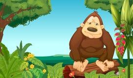 Een gorilla in het hout royalty-vrije illustratie
