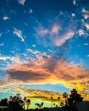 Een gouden zonsopgang over palmen Royalty-vrije Stock Afbeeldingen