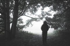Een griezelig vaag spookachtig cijfer met een kap aangaande een weg in een bos op een mistige dag Met gedempt, korrelig geef uit royalty-vrije stock fotografie