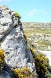 Een grijze rots van kleur Royalty-vrije Stock Afbeeldingen