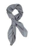 Een grijze zijdehalsdoek Royalty-vrije Stock Fotografie