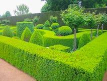 Een Groene aardige tuin met zeer nauwkeurig gesneden hagen stock afbeelding