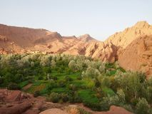 Een groene oase in het midden van een de woestijnreis Merzuga, Ma van de Sahara stock afbeelding