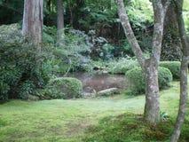 Een groene open plek met een vijver Royalty-vrije Stock Afbeelding