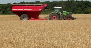 Een groene tractoraanhangwagen met een rode korreltank die op het gebied berijden Prores, langzame motie stock videobeelden