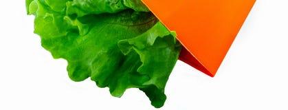 Een groene verse salade in het oranje pakket Royalty-vrije Stock Foto