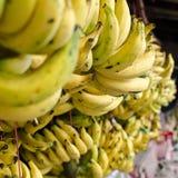 Een groep banaan. Royalty-vrije Stock Afbeeldingen