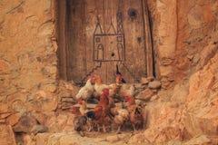 Een groep die kippen zich buiten voor een deur bevinden Stock Fotografie